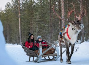 Reindeer ride with Christmas House Safaris in Rovaniemi, Lapland