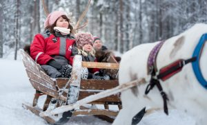 Reindeer excursion in Rovaniemi, Lapland with Christmas House Safaris